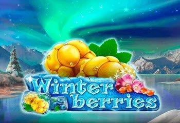 Winterberries thumbnail