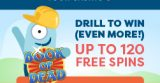 Playfrank Drill to Win - Book of Dead Free Spins