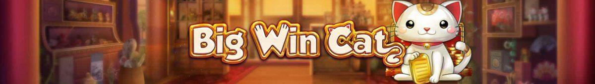 Big Win Cat-slot