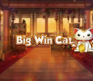 Big Win Cat-slot-main