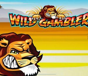 wild-gambler--slot-main