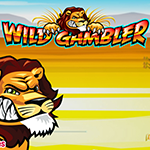 wild-gambler-slot-small