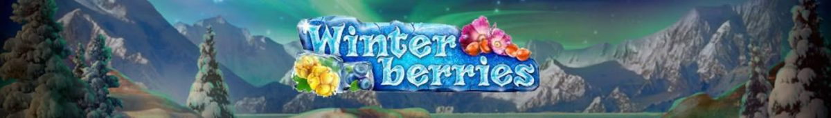 Winterberries Slot Game