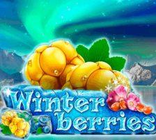 winterberries slot main