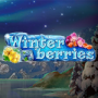winterberries-slot-small