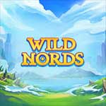 Wild Nords-slot-small