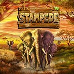 Stampede-slot-small