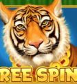 Chinese Wilds Slot - Free Spins Symbol