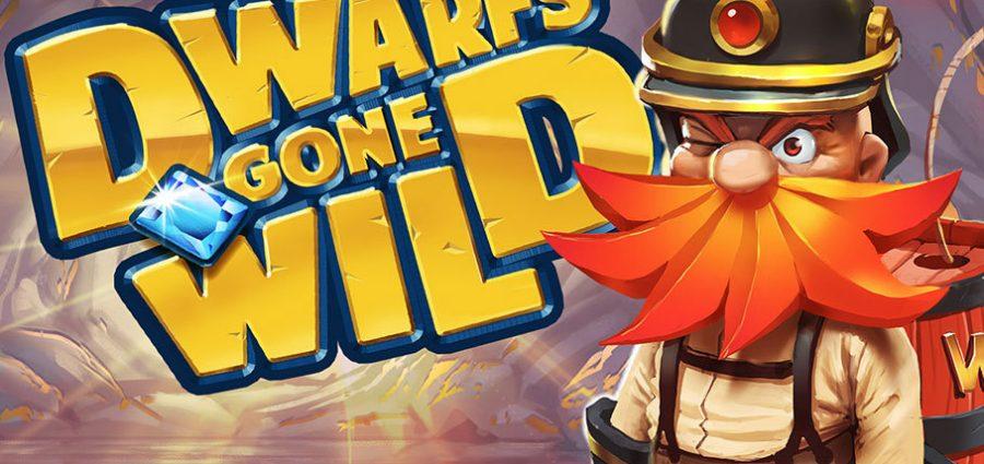 Dwarfs Gone Wild slot main