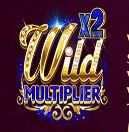 Reels of Wealth Slot - Wild Multiplier