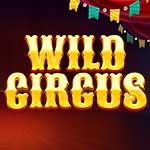 Wild Circus slot small