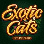 Exotic Cats slot small
