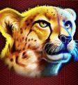 Great Rhino Slot - Cheetah Symbol