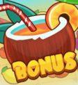 Tiki Fruits Slot - Bonus Symbol