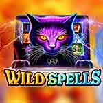 Wild Spells slot small