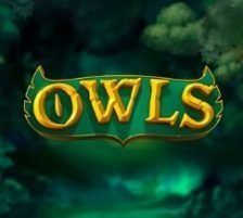 Owls Slot Featured Image