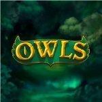 Owls Slot - Small Image