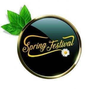 Spring Festival Fever Guts