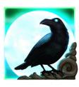 Ravens Eye Scatter Symbol raven icon