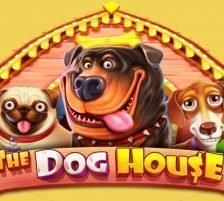 The Dog House logo and title