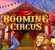 Booming Circus 270 x 218
