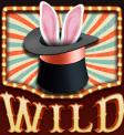 Booming Circus Wild Symbol