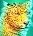 Cheetah Symbol Raging Rhino Megaways