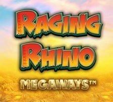 Raging Rhino Megaways 270 x 218