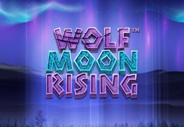Wolf Moon Rising 908 x 624