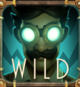 Tesla Wild