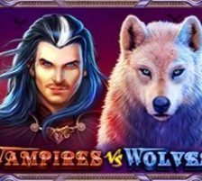 Vampires vs Werewolves 270 x 218