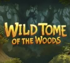 Wild Tome of the Woods 270 x 218