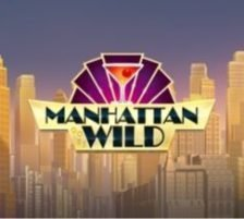 Manhattan Goes Wild 270 x 218