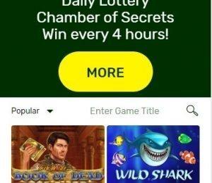 LuckyBird Casino Screenshot 1