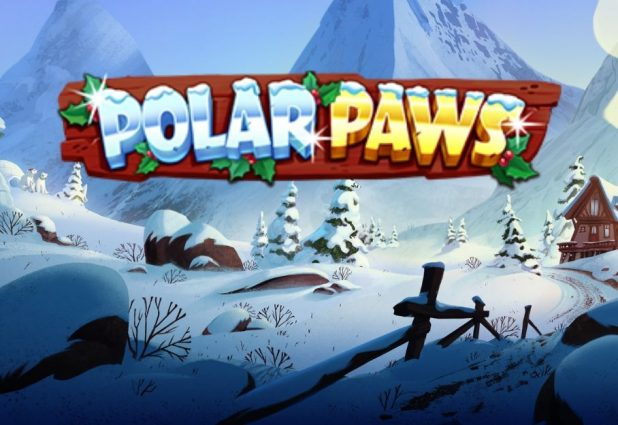 Polar Paws 908 x 624