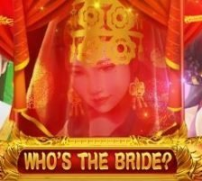 Who's The Bride 320 x 320