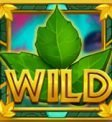 Poison Eve Expanding Vine Wilds