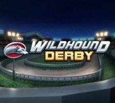 Wildhound Derby 270 x 218