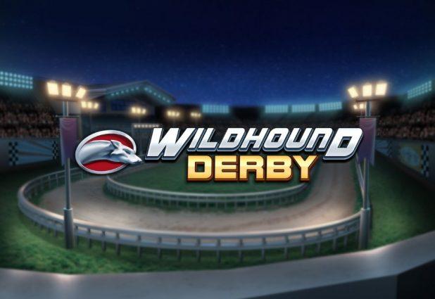 Wildhound Derby 908 x 624