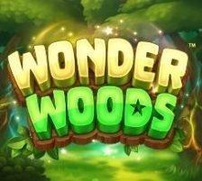 Wonder Woods 270 x 218