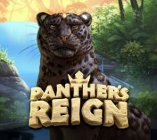 Panther's Reign 270 x 218