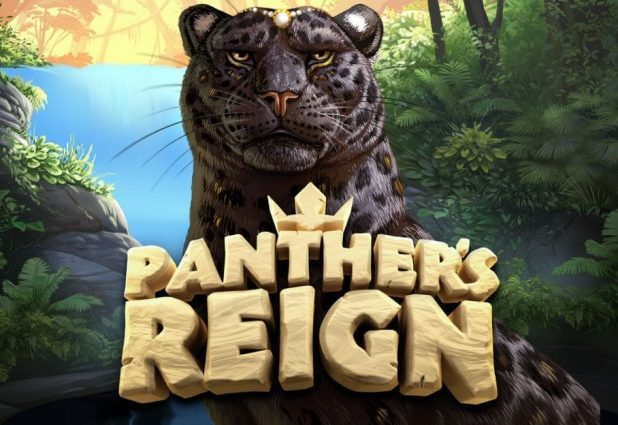 Panther's Reign 908 x 624