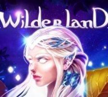Wilderland 270 x 218