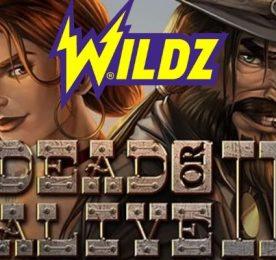Dead or Alive II Wildz