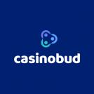 casino bud 320 x 320