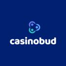 casino bud 400 x 520
