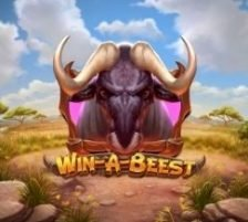Win a Beest 270 x 218