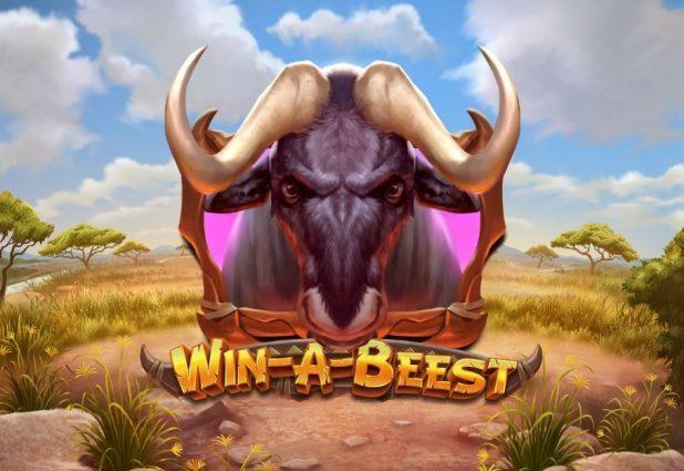 Win a Beest 908 x 624