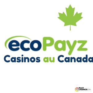 Ecopayz Casinos au Canada Icon