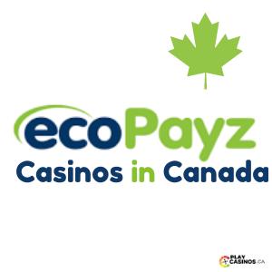 Ecopayz Casinos in Canad icon
